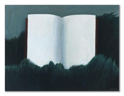 Gao Yuan 高源, Book 书, 2015