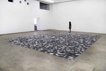Alice Wang 王凝慧, Untitled 无题, 2016