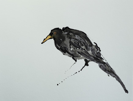 Mary Griffiths, Anxious Blackbird, 2021