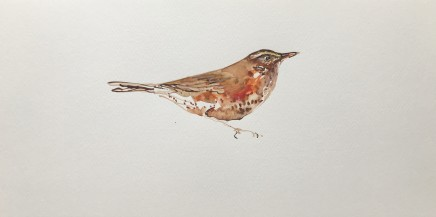 Sue Platt, Wet Redwing (87), 2021