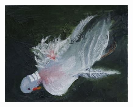 Mary Griffiths, Dead Bird 3 (Woodpigeon), 2020