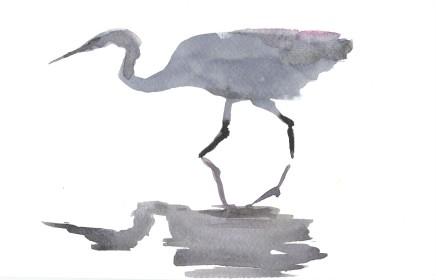 Liam Spencer, Great Egret