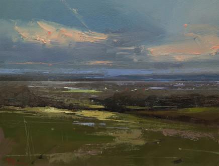 Michael Ashcroft AROI MAFA, Rivington Top, View towards Manchester