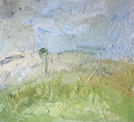 Richard Cook, Maytime on Dartmoor, 2013