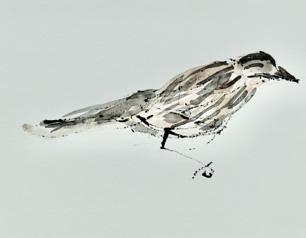 Mary Griffiths, Sparrow (Clenched Foot), 2019
