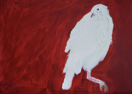 Mary Griffiths, Dove (Red), 2020