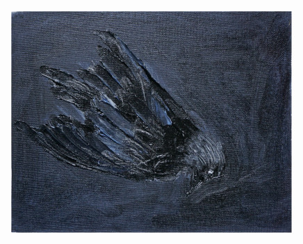 Mary Griffiths, Dead Bird 1 (Jackdaw), 2020