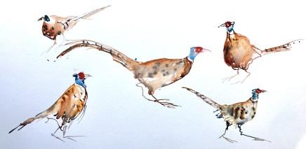 Sue Platt, Long Dashing Pheasants (52), 2021