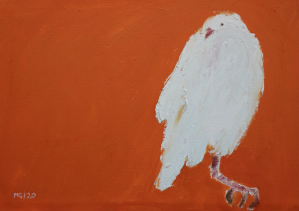 Mary Griffiths, Dove (Orange), 2020