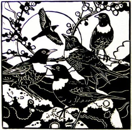 Ann Lewis RCA, Five Ring Ouzels