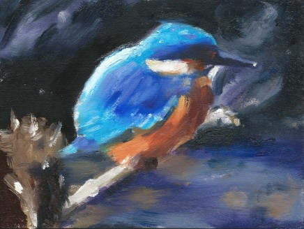Liam Spencer, Young Kingfisher, 2020