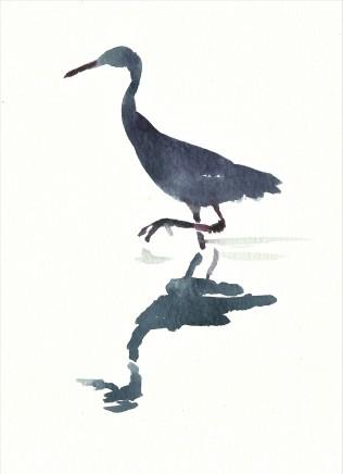 Liam Spencer, Great White Egret 5