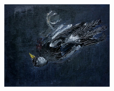 Mary Griffiths, Dead Bird 2 (Blackbird), 2020