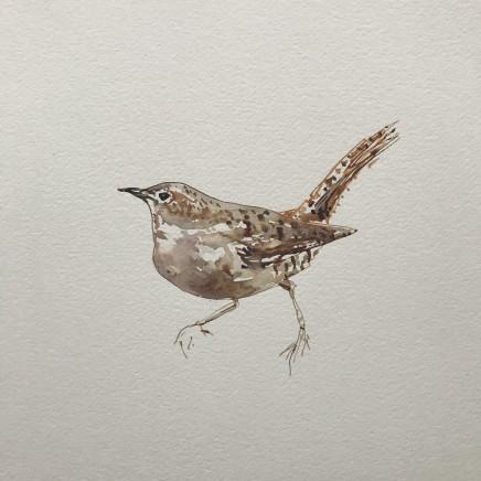 Sue Platt, Wren Impersonating a Sparrow (12), 2020