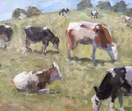 Adam Ralston MAFA, Cows Grazing