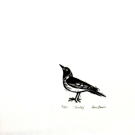 Ann Lewis RCA, Welsh Warblers (Shirley)