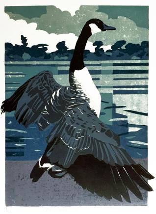 Ann Lewis RCA, Ellesmere Goose, 2020