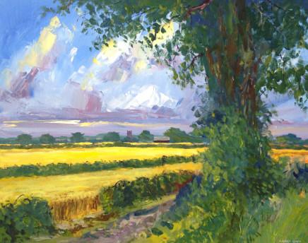 Richard Clare, Golden Fields