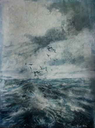 David Bez, Seabirds