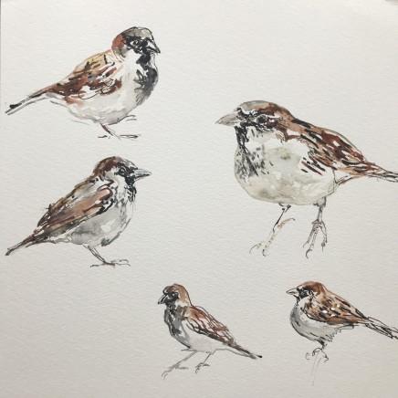 Sue Platt, Sparrow Medley (81), 2020
