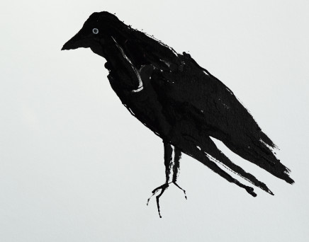 Mary Griffiths, Intense Jackdaw, 2021