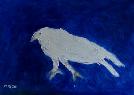 Mary Griffiths, Dove (Blue), 2020