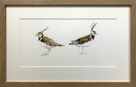 Sue Platt, Lapwing Fall Out (34)