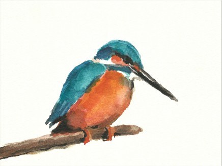 Liam Spencer, Kingfisher