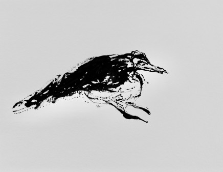 Mary Griffiths, Magpie (Squab), 2020