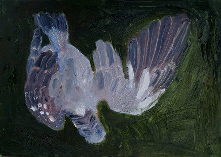 Mary Griffiths, Dead Bird 4 (Pigeon), 2020