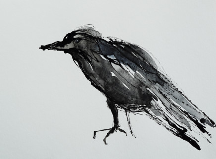 Mary Griffiths, Opinionated Jackdaw, 2021