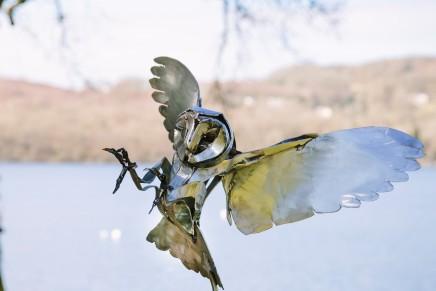 Clare Bigger, Silent Hunter (Barn Owl), 2021