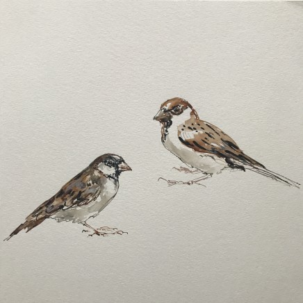 Sue Platt, Porchfield Sparrows (17), 2020