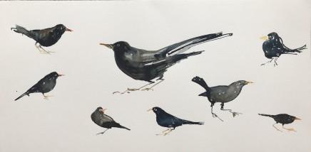 Sue Platt, Blackbird Studies (90), 2020