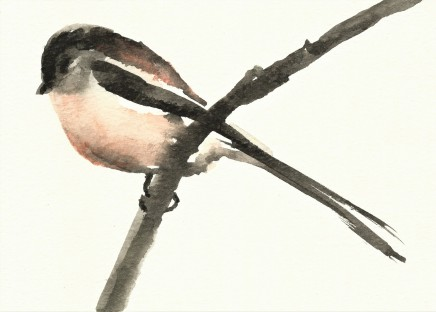 Liam Spencer, Long-Tailed Tit 2, 2020
