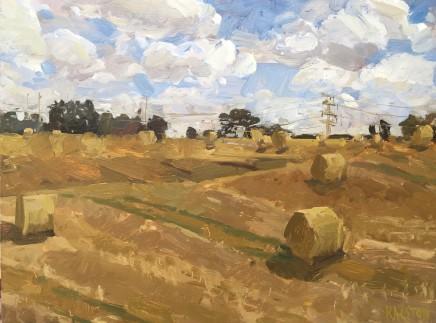 Adam Ralston MAFA, Wheatfields