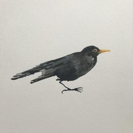 Sue Platt, Blackbird in Lockdown M3 (9), 2020