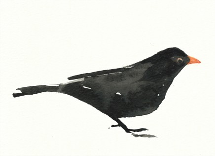 Liam Spencer, Blackbird 2