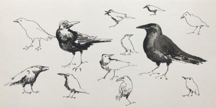 Sue Platt, Crow Studies (89), 2020