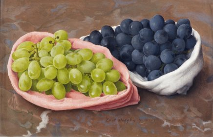 Eliot HODGKIN, Black and White Grapes