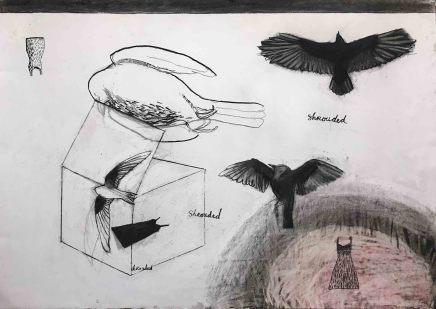 Suzy O'Mullane, Dead Birds and Cute Dress (unframed), 2020
