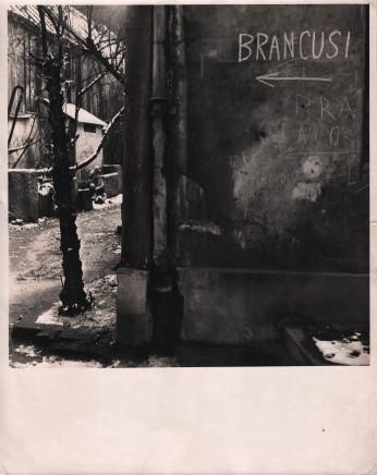 Florence Homolka, Brancusi's Studio, 1948