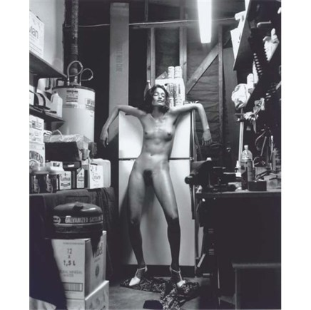 Helmut Newton, Domestic Nude (Handle with care)