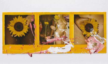 Marc Quinn, Untitled, 2009
