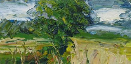 Colin Halliday, Cornfield Study, 2014-15