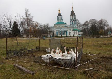 Quintina Valero, Chernobyl's exclusion zone, 2015