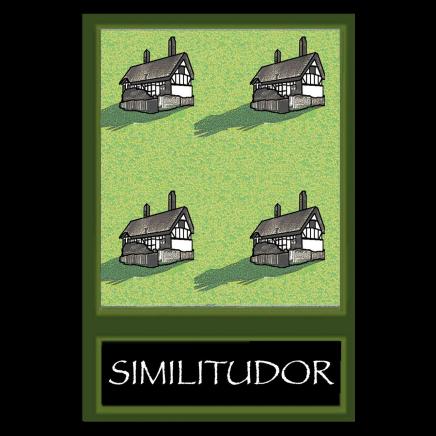 Sylvia Libedinsky, Tudor Series - Similitudor