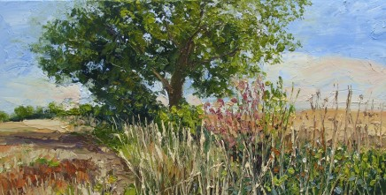 Colin Halliday, Hedgerow, Crops and Sun, 2013
