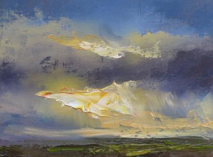 Colin Halliday, Sunset Study 2, 2013-14