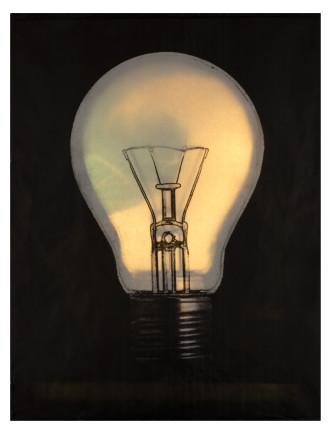 Sylvia Libedinsky, Light Bulb